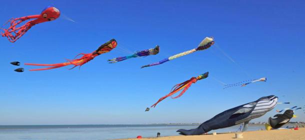 Festival de cerf-volant de châtelaillon