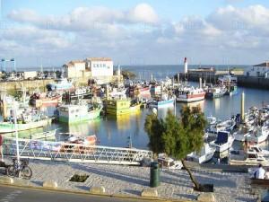 Les bateaux de pêches dans le port de La Cotinière, sur l'île d'Oléron