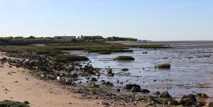 Les paysages sauvages de l'île Madame